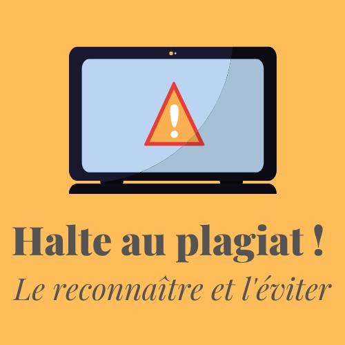 Halte au plagiat ! / Stop plagiarism ! |